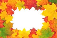 Diseño del otoño. Fotos de archivo