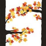 Diseño del otoño Imagen de archivo