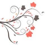 Diseño del otoño del vector Foto de archivo