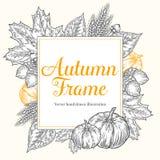 Diseño del otoño para la tarjeta de felicitación Elementos del otoño del festival de la cosecha del vintage Marco dibujado mano c Imagen de archivo
