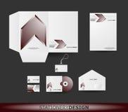 Diseño del papel fijado en formato del vector Fotos de archivo