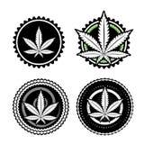 Diseño del sello del diseño de la hoja de la marijuana Imágenes de archivo libres de regalías