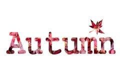 Diseño del texto del otoño imagenes de archivo