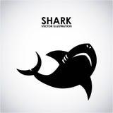 Diseño del tiburón Fotografía de archivo