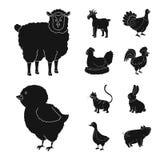 Diseño del vector de rancho y de icono orgánico Colección de símbolo de las existencias del rancho y de alimentos para la web stock de ilustración