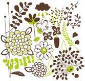 Diseño determinado de la flora del vector Fotografía de archivo