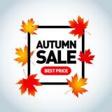 Diseño estacional de la bandera de la venta del otoño Cartel de Autumn Sale Hoja de la caída Fotografía de archivo libre de regalías