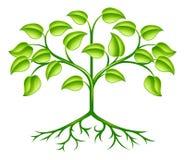 Diseño estilizado del árbol ilustración del vector