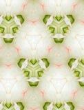 Diseño floral abstracto para el fondo Foto de archivo libre de regalías