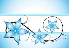 Diseño floral azul del invierno Fotografía de archivo