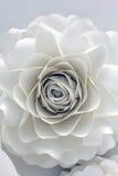 Diseño floral de papel Foto de archivo libre de regalías