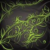 Diseño floral decorativo. Ejemplo del vector Fotos de archivo libres de regalías