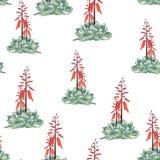 Diseño floral del estilo de la acuarela del vector inconsútil del modelo: suculento en la floración ilustración del vector