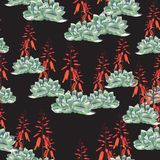 Diseño floral del estilo de la acuarela del vector inconsútil del modelo: suculento en la floración libre illustration