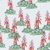 Diseño floral del estilo de la acuarela del vector inconsútil del modelo: suculento en la floración con las flores anaranjadas libre illustration