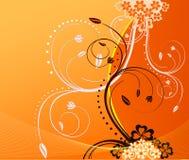 Diseño floral del vector ilustración del vector