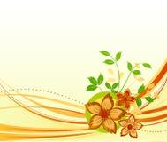Diseño floral del vector libre illustration