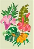 Diseño floral del vector del tatuaje Imagenes de archivo