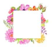 Diseño floral hermoso de la acuarela Fotografía de archivo libre de regalías