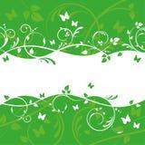 Diseño floral verde de la bandera Fotos de archivo