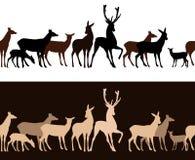 Diseño inconsútil de ciervos del vector salvaje de la manada Imagen de archivo
