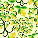 Diseño inconsútil del vector del modelo de la fruta jugosa del verano del árbol de limón libre illustration