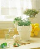 Diseño interior fotografía de archivo libre de regalías