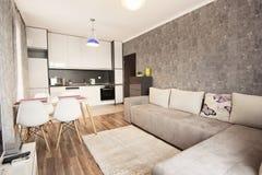 Diseño interior moderno de la sala de estar brillante y acogedora con el sofá, la mesa de comedor y la cocina Apartamento-estudio imagenes de archivo
