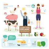 Diseño limpio orgánico Infographic de la plantilla de la buena salud de las comidas stock de ilustración