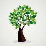 Diseño lindo del árbol del concepto ilustración del vector