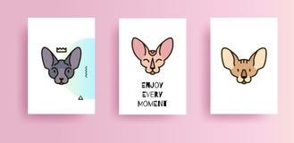 Diseño mínimo de cubiertas con los gatos stock de ilustración