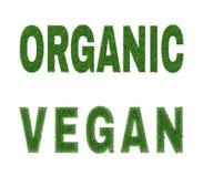 Diseño orgánico del vegano Fotografía de archivo