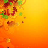 Diseño otoñal Imagen de archivo