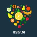 Diseño plano de la cosecha de las frutas Fotos de archivo