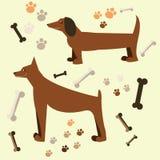 Diseño plano del perro Doberman y perro basset Fotografía de archivo