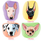 Diseño plano determinado del retrato del perro Imagenes de archivo