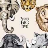 Diseño redondeado con los animales del ` s cinco grandes de África Foto de archivo