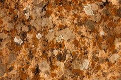 Diseño rico de lujo de la textura del fondo del grunge del vintage del fondo anaranjado abstracto con la pintura antigua elegante Foto de archivo libre de regalías