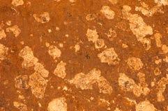 Diseño rico de lujo de la textura del fondo del grunge del vintage del andbackground amarillo abstracto con la pintura antigua el Fotos de archivo