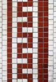 Diseño serpentino del azulejo Foto de archivo libre de regalías