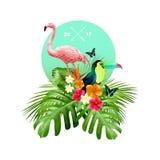 Diseño tropical Foto de archivo libre de regalías