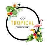 Diseño tropical de la frontera Imagenes de archivo