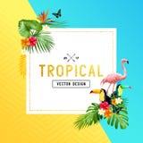 Diseño tropical de la frontera Fotos de archivo libres de regalías