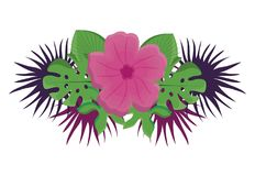 Diseño tropical de las flores libre illustration