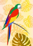 diseño tropical del ejemplo de la imagen del icono del pájaro del loro colorido Imágenes de archivo libres de regalías