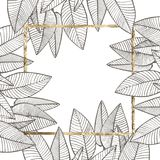 Diseño tropical del vector de las hojas del verano Fondo floral abstracto Invitación o diseño de tarjeta con las hojas de la selv Foto de archivo