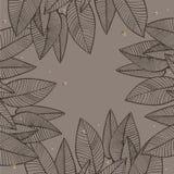 Diseño tropical del vector de las hojas del verano Fondo floral abstracto Invitación o diseño de tarjeta con las hojas de la selv Fotografía de archivo libre de regalías