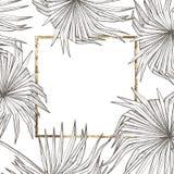 Diseño tropical del vector de las hojas del verano Fondo floral abstracto Invitación o diseño de tarjeta con las hojas de la selv Imágenes de archivo libres de regalías