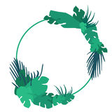 Diseño tropical del vector del marco de las hojas Fotos de archivo libres de regalías