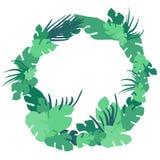 Diseño tropical del vector del marco de las hojas Fotografía de archivo
